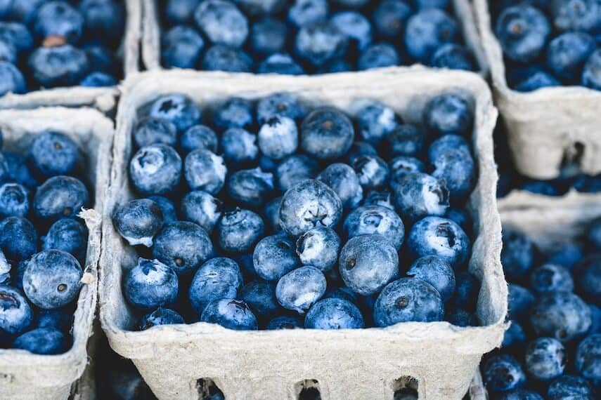Blueberries in a square cardboard containers