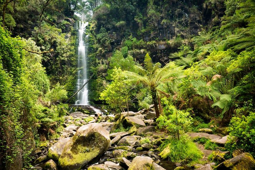 Erskine Waterfall Lorne