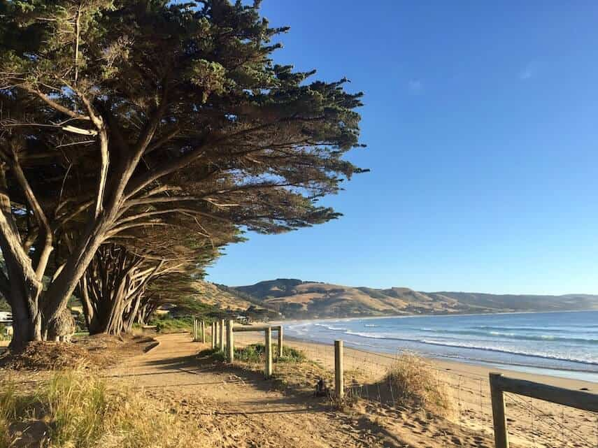 Great Ocean Road Accommodation Guide - Apollo Bay Beachfront