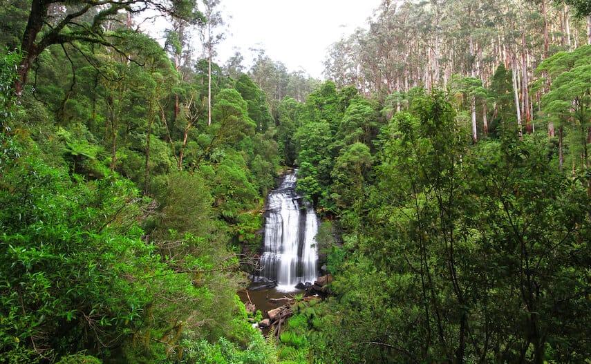 Little Aire Falls, Beech Forrest Cape Otway