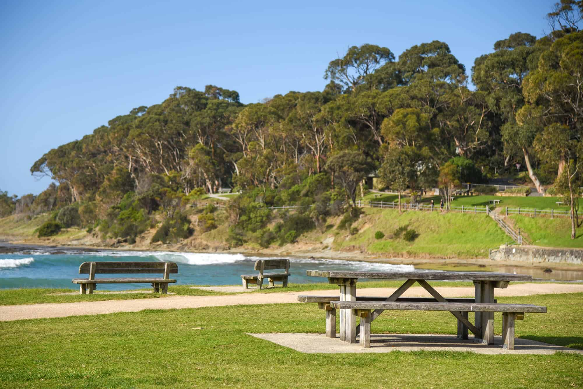 Picnic Area by the Ocean by wooden table and chair sets and wooden benches with the ocean and trees on the background