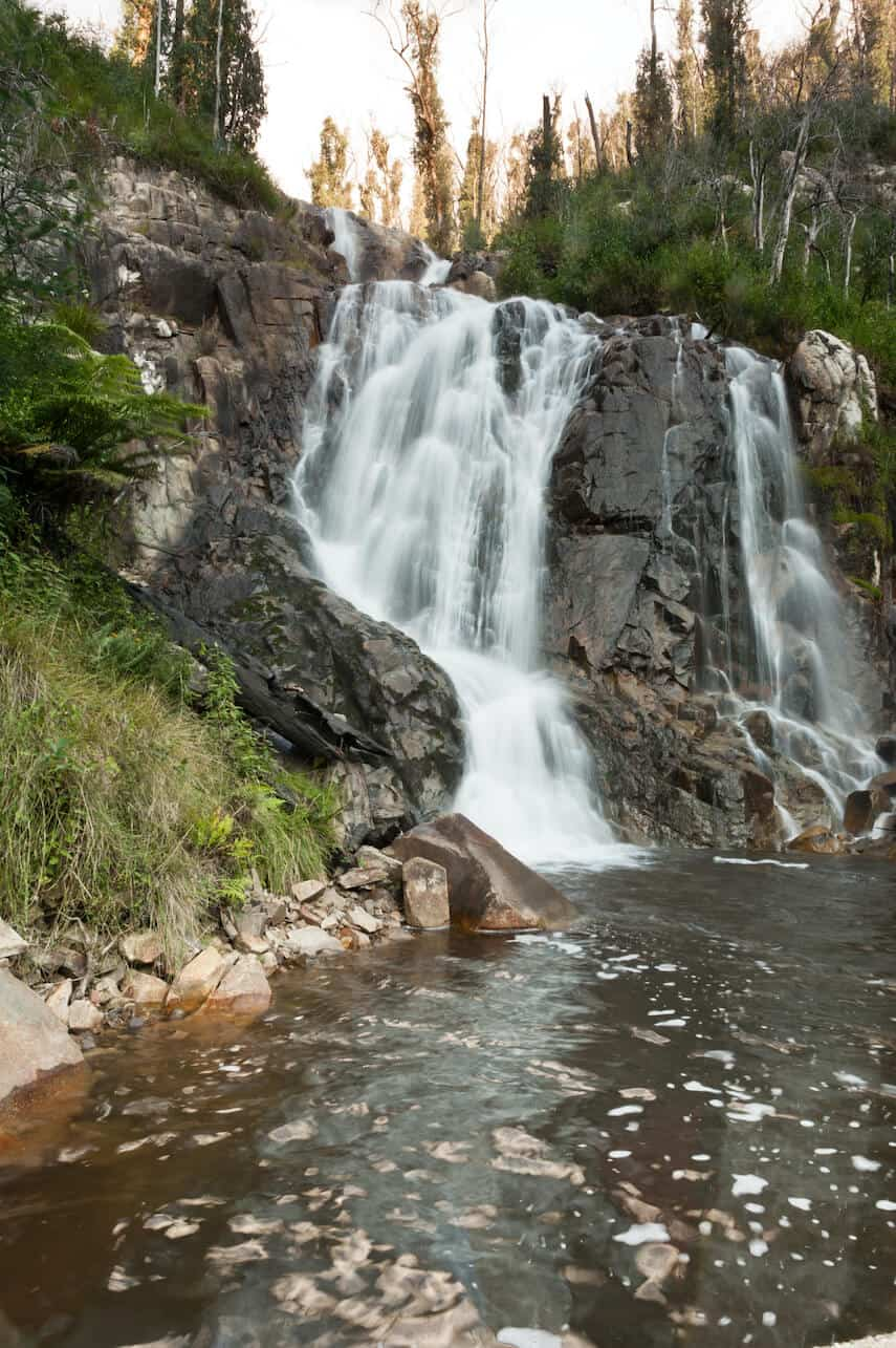 Stevenson Falls Otway National Park
