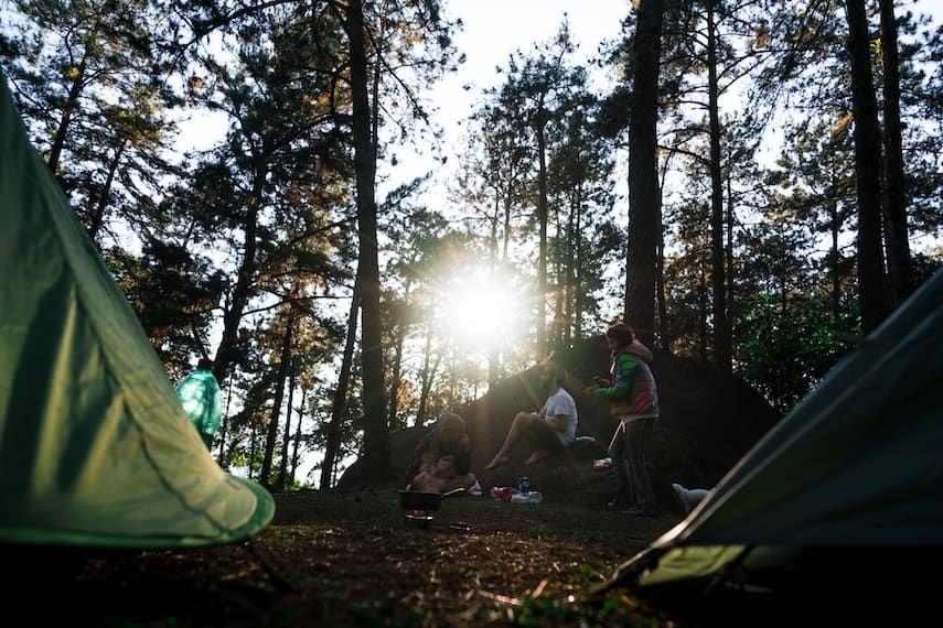 Campsite on the Great Ocean Walk with tall trees in the background and a sunburst shining through the trunks