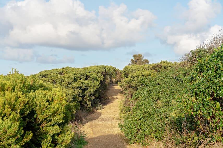 Great Ocean Walk Track