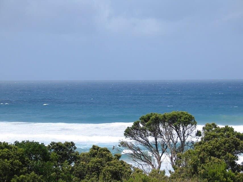 Waves at Johanna beyond the treeline